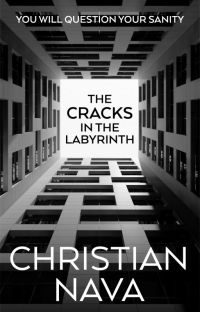 The Cracks in the Labyrinth cover