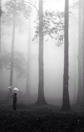 Hetalia x Reader Sequel: My Time Spent in Limbo by Fra22nci4ska