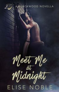 Meet Me at Midnight (Romance, Completed) cover
