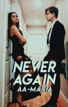 Never Again [Editando]  cover