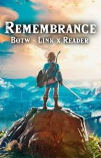 Remembrance - BOTW Link x Reader by legendofmist