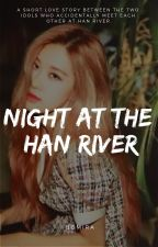 ✓ | Night At The Han River by bomira