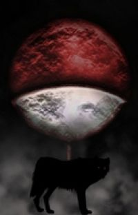 The Breaking Point (SasukeXOC) cover