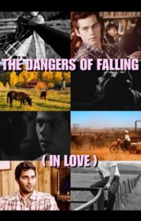 The Dangers of Falling (in Love) cover
