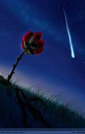 Fallen Stars by shadowblade0308