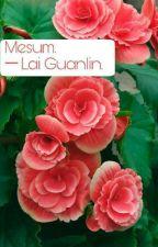 Mesum. ─ Lai Guanlin. by pacamine