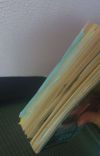 The Last Child of Kasai cover