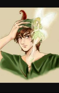 The Tale of a RunAway (Peterpan x reader) cover