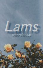 unpolished [lams]  by shinyquartz