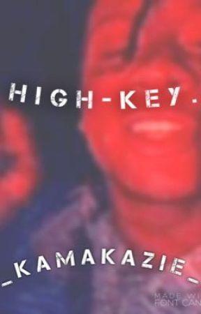 HIGH-KEY.  by VEXXANN