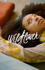 Wildflower   Volturi Kings by lucefatale