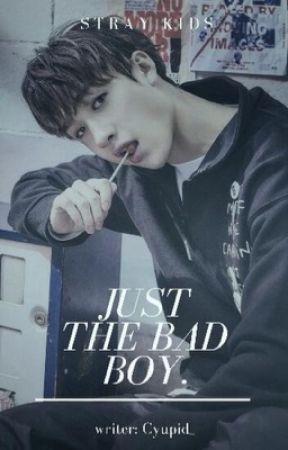 Just The Bad Boy •Stray Kids Chan• by Cyupid_