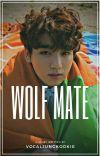 Wolf Mate~ j.jk cover