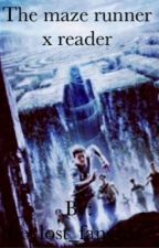 The maze runner x reader {ON HOLD} by GwynethStarks