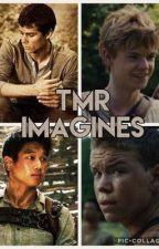TMR Imagines and Preferences - Newt, Thomas, Minho, and Gally by Mariposita_Bonita