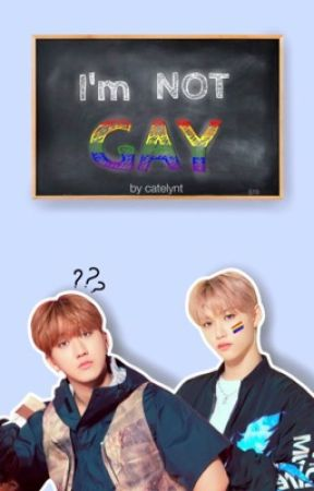 I'm Not Gay    Stray Kids  by catelynt