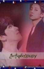 ဦးကိုချစ်တဲ့pupy by parkchanyeoljihoon