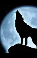 Wolf by Castielounetnoemie