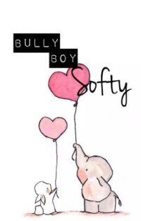 Bully boy softy (boyxboy)  cover