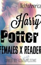 Harry Potter females x reader by NotAnAmerican