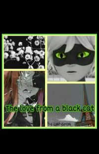 The Love From A Black Cat (Cat Noir X Reader) cover
