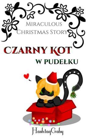 Czarny Kot w pudełku [MIRACULOUS CHRISTMAS CHALLANGE] ✔ by GabiLiscieGrabi