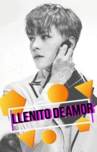 LLENITO DE AMOR cover