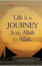 Amazing quotes by samiramohamed17