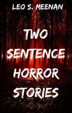 Two Sentence Horror Stories by Mr__Horror