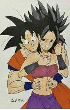 Un aviso a todos los fans de Goku x Caulifla by Shinkun4869