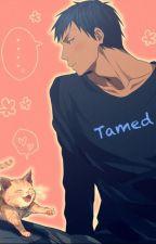 Tamed {Aomine x Reader} by PikaJovi