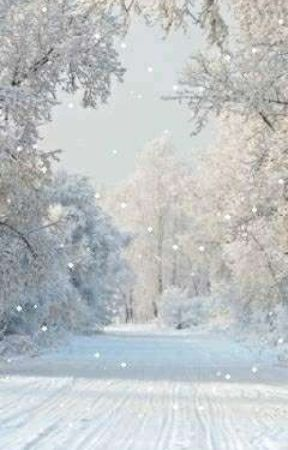 sʟєıɢһ ɞєʟʟs яıňɢ by -winterwonderland