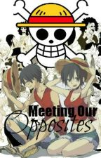 Meeting our opposites (One Piece) by luxsit