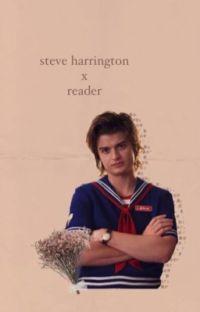 steve harrington x reader cover