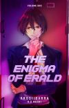 The Enigma of Erald cover