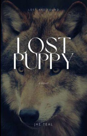 Lost Puppy by jaeteal01