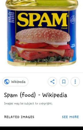 SPAM BOOOOK by IntrovertSince2003