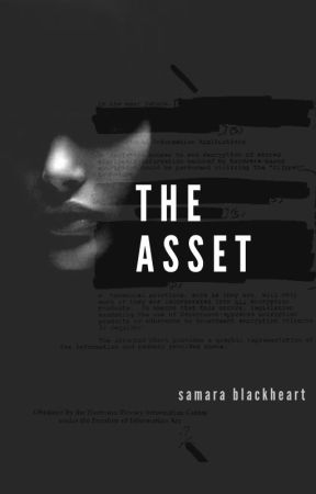 The Asset  (Asset Series #1) by KatNoir206