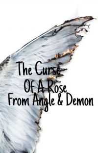 The Curse Of A Rose From Angel & Demon cover
