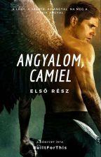 Angyalom, Camiel by BuiltForThis