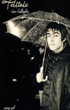 Telltale ~ Liam Gallagher  by puny_god