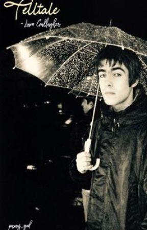 Telltale ~ Liam Gallagher  by puny_god
