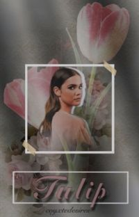 tulip [S. Harrington] cover