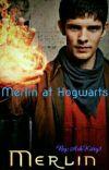 Merlin at Hogwarts cover