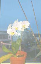 flowers ≠ reddie by xtrashmouth
