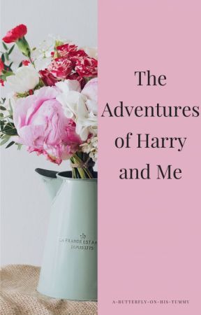 The Adventures of Harry and Me (H.S.) by abutterflyonhistummy