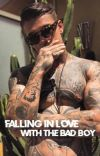 Falling In Love with the Bad Boy cover