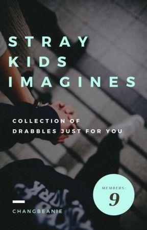 Stray Kids Imagines || Ot9 by inkbin