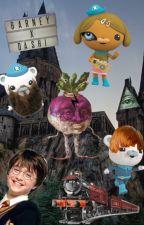 Octonauts Harry Potter Crossover by bumnugs