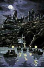 Hogwarts heirs by lunaestellechase
